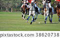 Horse polo players are competing in polo field. 38620738