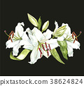 Watercolor set of white lilies, hand drawn 38624824