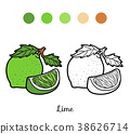 Coloring book, Lime 38626714