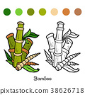 Coloring book, Bamboo 38626718