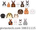 矢量 动物 兔 38631115
