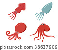 Squid, octopus and cuttlefish in flat, vector 38637909