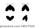 Drain Fly icons in silhouette style, vector design 38637920