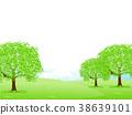 tender, green, verdure 38639101