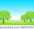 tender, green, verdure 38639102