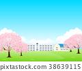 벚꽃, 학교, 학사 38639115