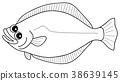 图画书 鱼 右偏比目鱼 38639145