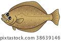鱼 人物 右偏比目鱼 38639146