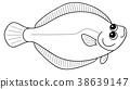 righteye flounder, flounder, coloring book 38639147
