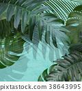 잎, 이파리, 잎사귀 38643995
