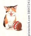 猫 猫咪 小猫 38647241
