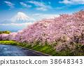 Mt. Fuji in Spring 38648343