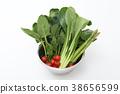 야채, 채소, 시금치 38656599