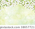Vector blossoming branches of apple  tree. 38657721