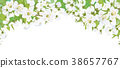 Vector blossoming    tree, spring background. 38657767