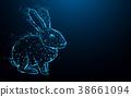 兔子 兔 抽象 38661094
