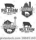 farm, vector, illustration 38665160