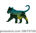 Silhouette of lioness on the hill landscape 38679708