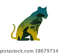 Silhouette of lioness on the hill landscape 38679734