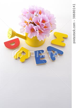 Dream Dream 38680141