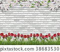 Tulips tree branch grass white brick wall 38683530