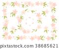 樱花 樱桃树 春天 38685621