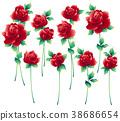 玫瑰 玫瑰花 花朵 38686654