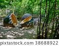 prehistoric dinosaur eggs in nature environment 38688922