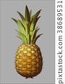Engraving color pineapple illustration on gray BG 38689531