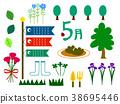 โคลเวอร์,คาร์เนชั่น,พืชสีเขียว 38695446