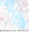 櫻花 櫻 賞櫻 38700171