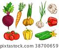 蔬菜 摳圖 白底 38700659