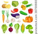 蔬菜 摳圖 白底 38700660