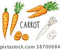 胡蘿蔔 摳圖 白底 38700684