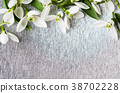 Bunch of snowdrops on silver background 38702228