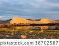 The beauty of Bruneau Sand dunes. 38702587
