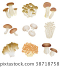 Various mushrooms 38718758