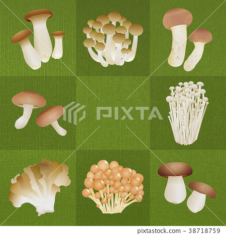 蘑菇 原料 食品 38718759