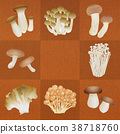 Various mushrooms _ Brown 38718760