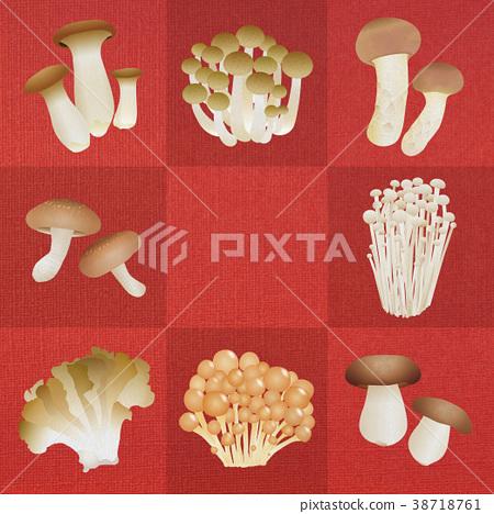 蘑菇 原料 食品 38718761