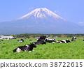 富士山 堆 許多 38722615