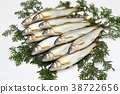 fish, fishes, freshwater fish 38722656