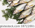 fish, fishes, freshwater fish 38722661