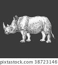 Zoo. African fauna. Rhinoceros, rhinoceros. Hand 38723146