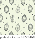 Cocoa beans vector seamless pattern. Engraved 38723469