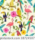 bird tropical seamless 38724507