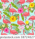 bird, tropical, flower 38724627