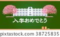 cherry, blossom, tree 38725835