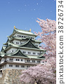 Nagoya castle and cherry blossoms 38726734