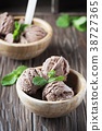 Cold ice cream with chocolate and mint 38727365